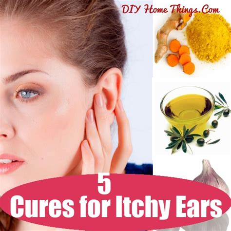 itchy ears cures for itchy ears diy home things
