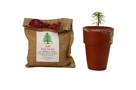 cheap christmas gifts christmas celebrations