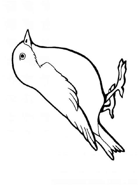 Sparrow Coloring Pages Sparrow Coloring Pages Download And Print Sparrow by Sparrow Coloring Pages