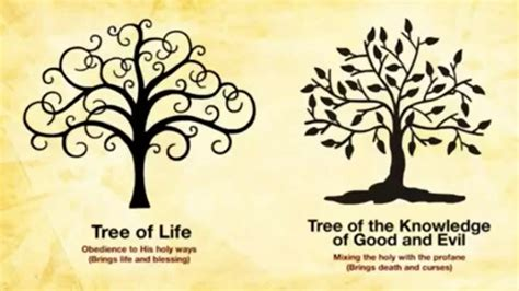 Choice Of Evil the eternal choice the tree of vs the tree of