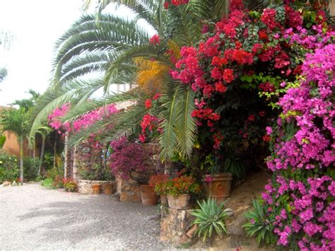 arte y jardines de m 233 xico