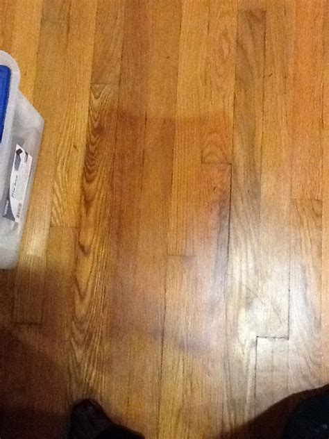 cleaning stained hardwood floors q how do i get a large urine stain out of a polyurethane