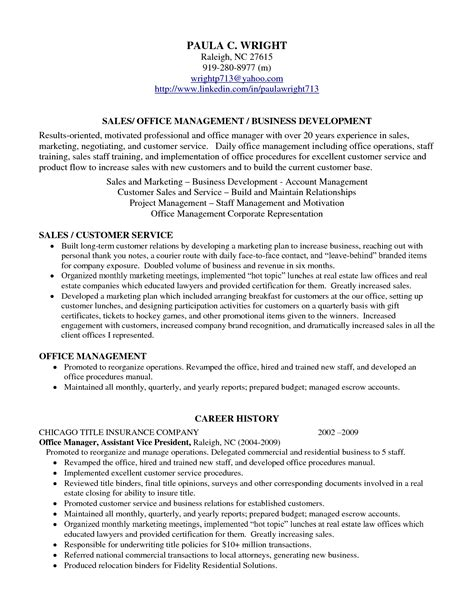 Professional Profile On Resume by Professional Profile Resume Exles Resume Professional