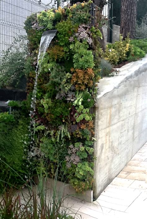 1000 images about succulents vertical garden on