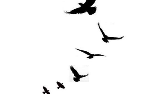 simple bird tattoo designs simple bird tattoos designs projects to try