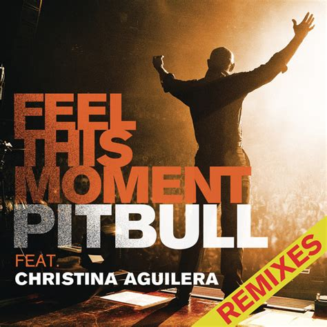 download mp3 dj feel this moment pitbull feel this moment feat christina aguilera