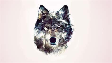 drawn wallpaper wolf pencil   color drawn wallpaper