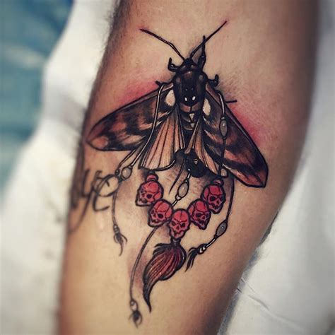 tattoo equipment perth wa 17 best images about tattoos animals on pinterest