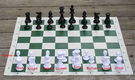 download chess pieces board setup free filecloudranch
