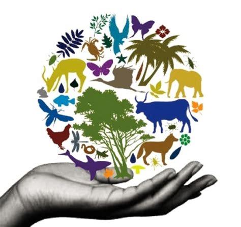 Delta Safety Handmade biodiversity fabius maximus website