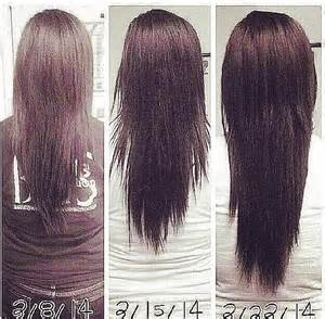 How To Get Your Hair To Grow Longer And Faster by Grow Hair In A Week Hair Tomuch Us