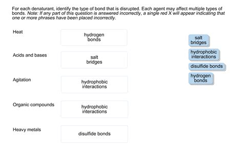 for each denaturant identify the type of bond tha