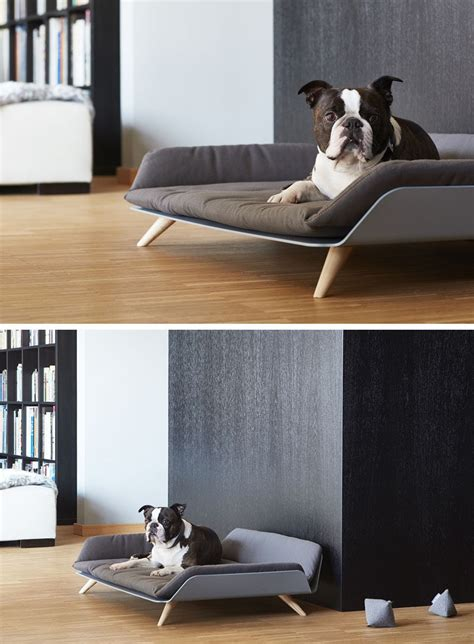 modern dog beds the letto daybed is a modern dog bed with plenty of style