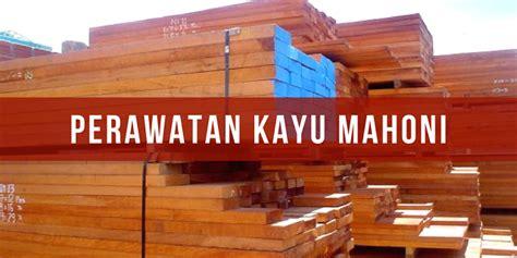 Perawatan Kayu Semir Kayu Pengkilap Kayu cara merawat kayu mahoni sejak masa tebang paint and coating
