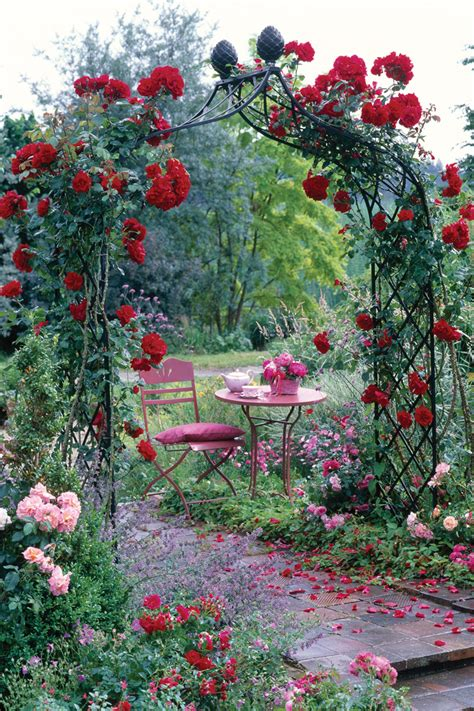 how to create a rose trellis arch how tos diy climbing rose supports make fabulous features for smaller