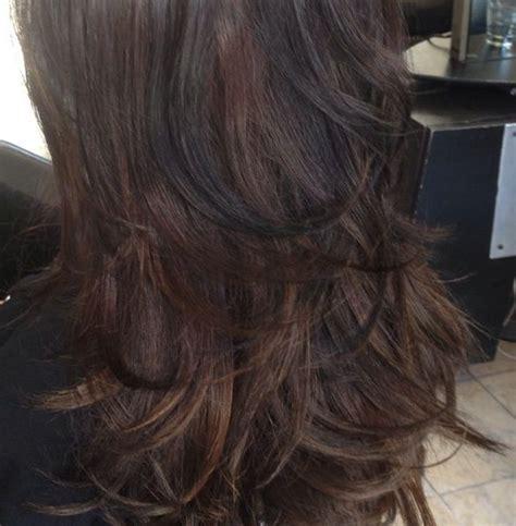 dark brown hair  black lowlights hair hair color
