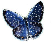 imagenes de mariposas moviendose banco de imagenes y fotos gratis gifs animados mariposas