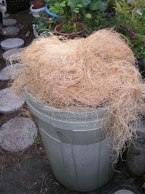 john starnes urban farm free nesting material for my