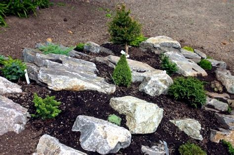 Creating A Rock Garden Creating A Rock Garden Where Plants Are Best Placed Interior Design Ideas Ofdesign