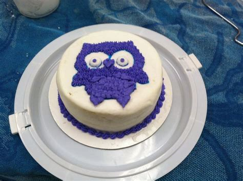 76 best images about wilton cake decorating classes at