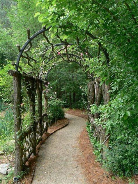 willows and path mural living willow tunnel for garden and backyard everything about garden