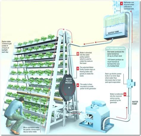 Plants That Don T Need Sunlight vertical farming singapore s solution to feed the local