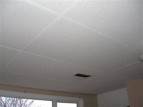 Painting A Drop Ceiling by Painting That Thing Called The Suspended Ceiling System