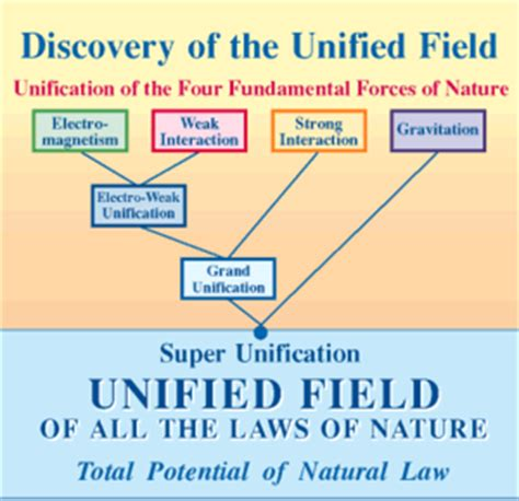 unifying the universe the physics of heaven and earth books international conference on invincible defence p 6