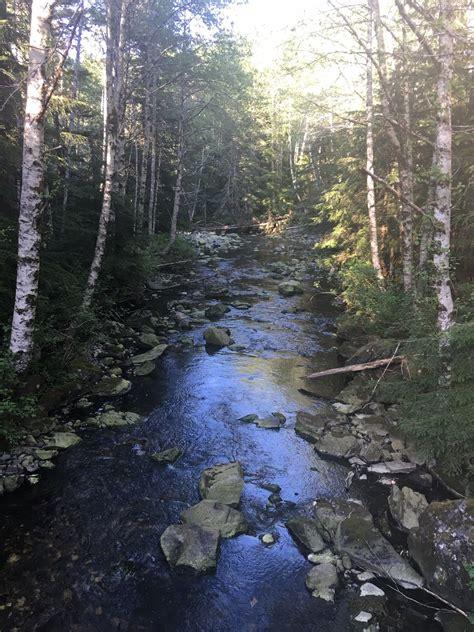 bear lake trail washington alltrails