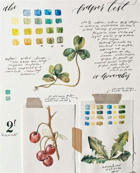 libro botanical sketchbook inspiration and 506 best botanical sketchbook images on nature journal draw and cartoon flowers