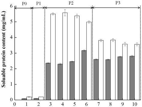 pattern formation in vitro in vitro gastrointestinal digestion study of a novel bio
