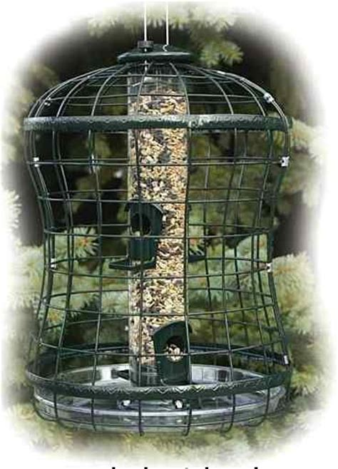 caged squirrel proof birdfeeder  tray  woodlink