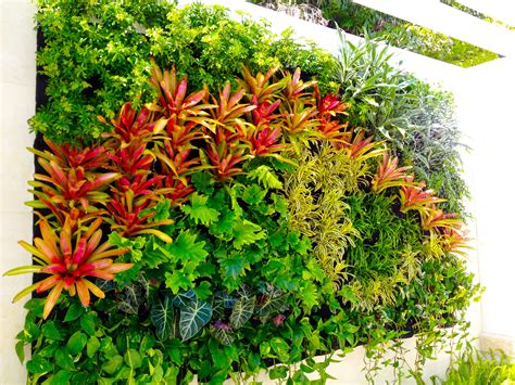 big color vertical garden plants on walls