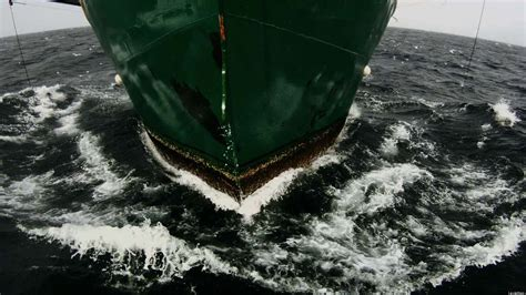 film leviathan leviathan movie trailer is gritty intense video huffpost