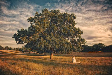 pros  cons  outdoor weddings confetticouk