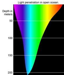 Which Color Of Visible Light Has The Longest Wavelength A Revolutionary New Squid Jig Science 2 0