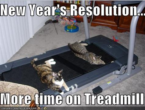 Funny New Years Eve Memes - funny quotes about new year s resolutions divine lifestyle