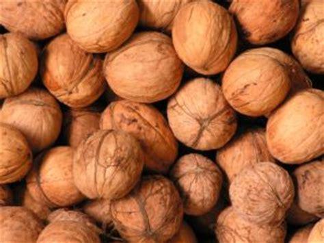 whole grains lysine arginine lysine rich foods glycemic index