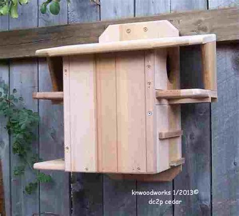 squirrel houses plans gray squirrel house plans home design and style