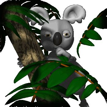 imagenes animadas koala ramsscience koala 2