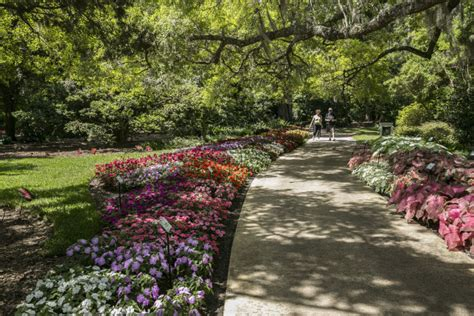 Florida Flower Garden The 15 Most Beautiful Gardens You Ll See In Florida