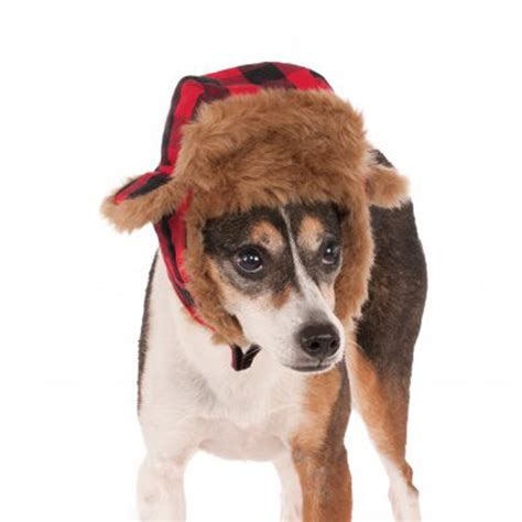 trapper hat for dogs trapper hat costume baxterboo