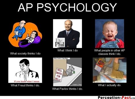 Psychology Memes - ap psychology what people think i do what i really