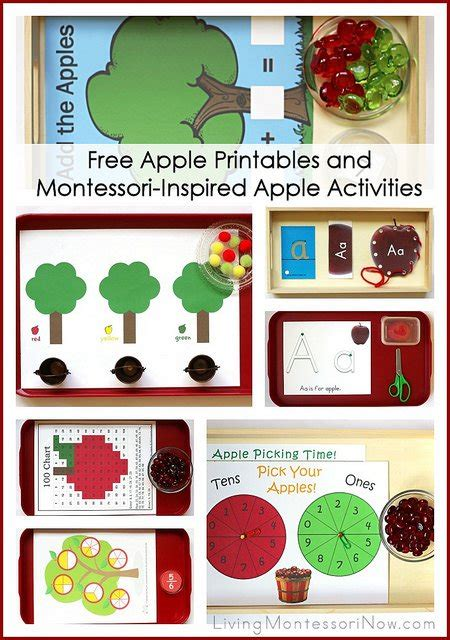 printable montessori activities montessori monday free apple printables and montessori