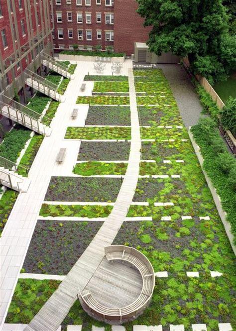 harvard university  garden street american hydrotech