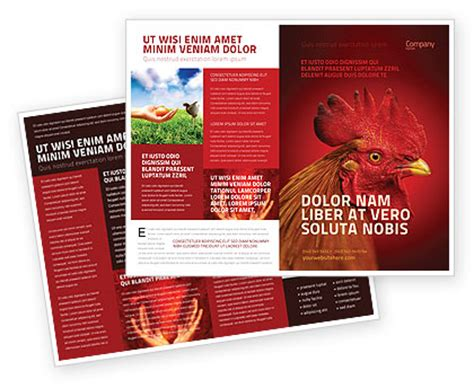 Rooster Brochure Template Design And Layout Download Now 04937 Poweredtemplate Com Free Agriculture Flyer Templates