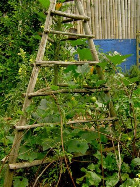 vertical gardening gardening vegy structures