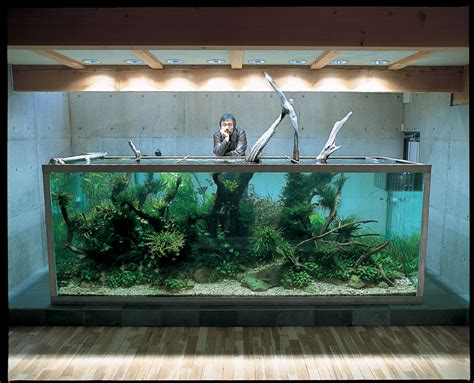 Takashi Amano Aquascaping takashi amano zen and the of the aquascape the essence of things