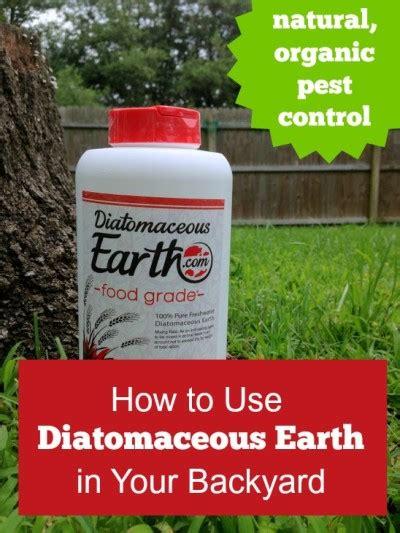 backyard flea control using diatomaceous earth in your backyard mom prepares