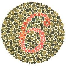 tavole daltonismo test de daltonismo de ishihara completo 38 l 225 minas gratis